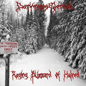 Darkness Eternal - Raging Blizzard Of Hatred